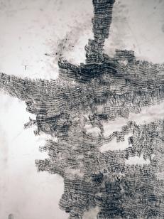"Kate McGraw Interlocking from ""Vermont"" series, 2008. Conté crayon on paper 24 x 18"""