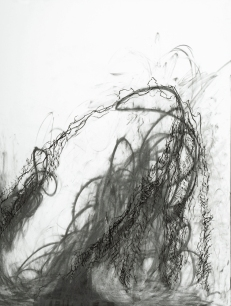 """Kate McGraw A Peaceful Taming or Riling, 2007 Graphite stick, pencil and conté crayon on paper 24 x 18"""""""