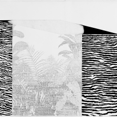 "Mitch Patrick Menagerie, 2011 graphite and gel medium on paper 28 x 21.5"""