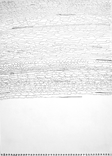 """Mitch Patrick Tracks and Traces, 2011 pen and ink on paper 12.5 x 17.25"""""""