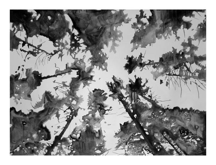 Loren Nosan, Passage, 2013, Watercolor, 36 x 47 in.